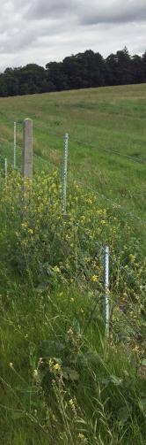 b9010-fence